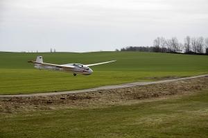Bocian im Landeanflug